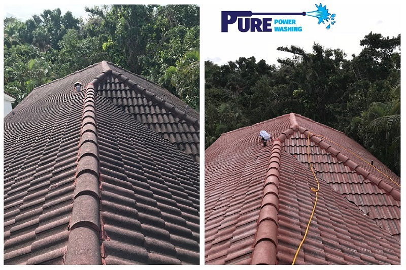 Roof Cleaning In Palm Beach Fl Pure Power Washing 561